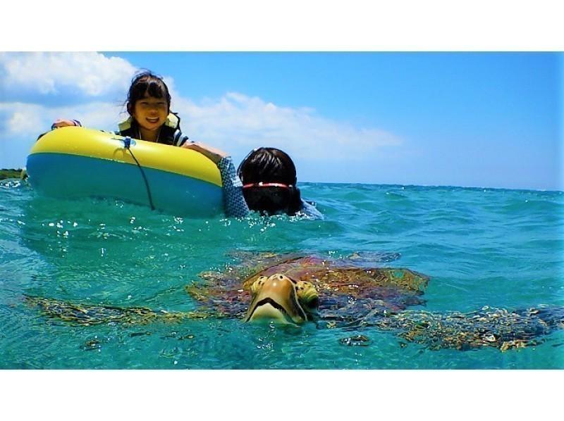 沖繩戸外活動,浮潛看海龜