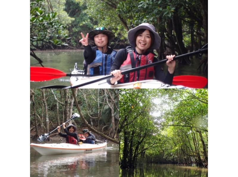 沖繩戸外活動,紅樹林泛舟探險