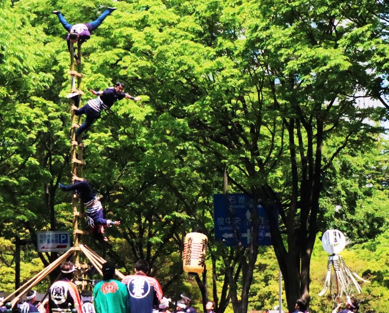 仙台青葉祭 消防傳統乘梯
