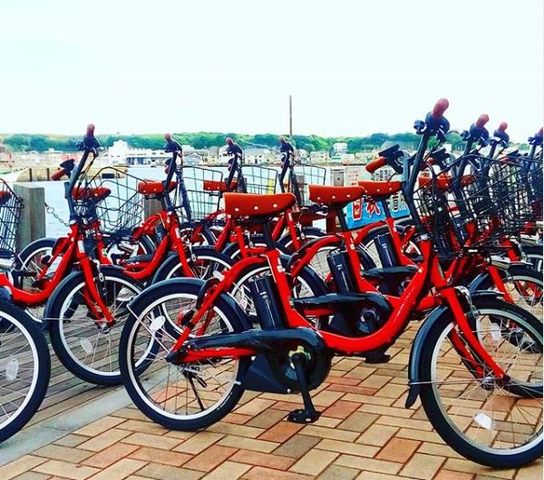 京急三崎鮪魚一日套票 腳踏車