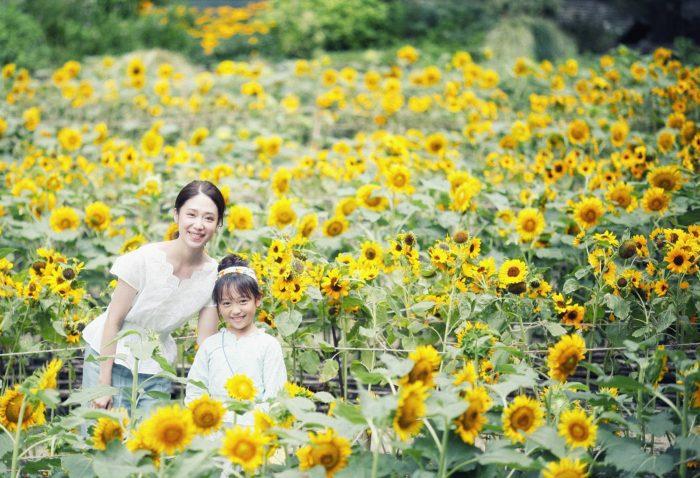 神戶布引香草園-3