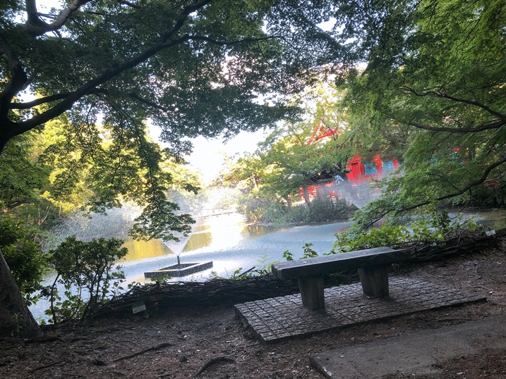 井之頭公園 池塘 吉祥寺