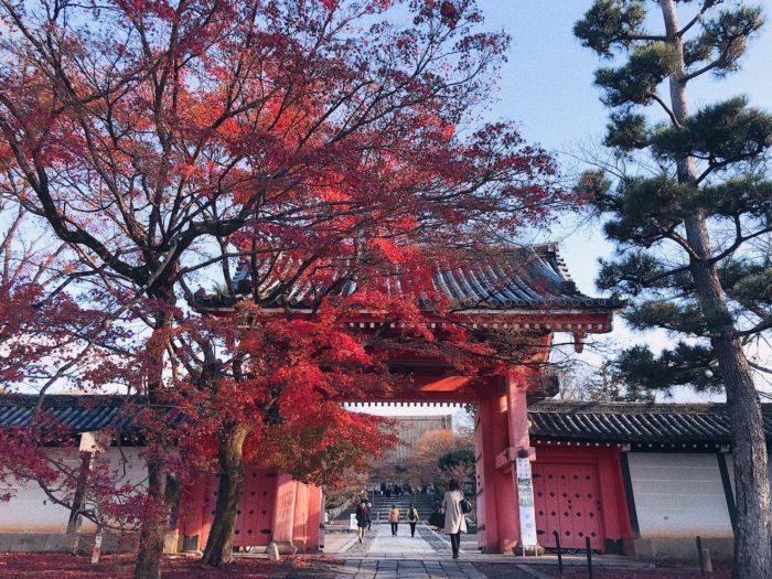 京都 楓葉 真正極楽寺 真如堂