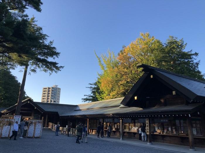 北海道自由行 北海道神宮