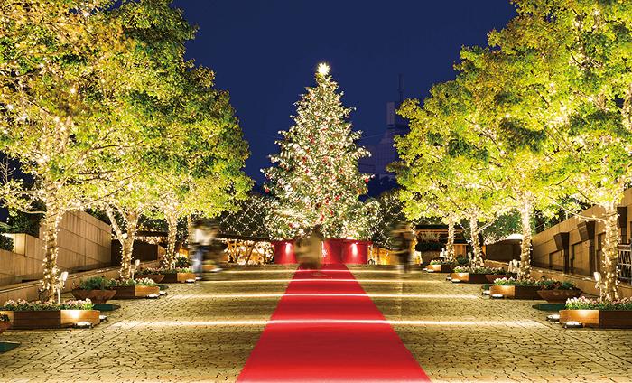 惠比壽 2019 聖誕燈飾