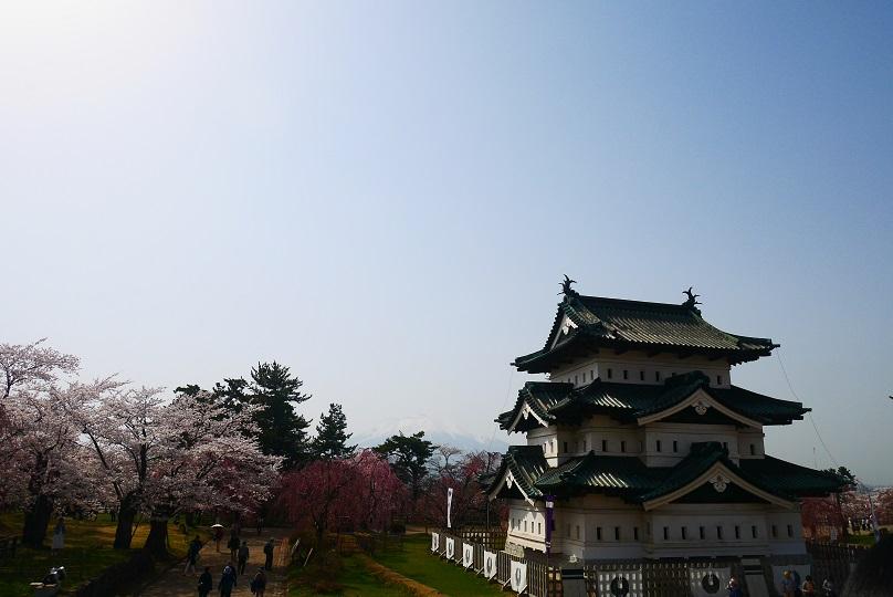 弘前城 賞櫻