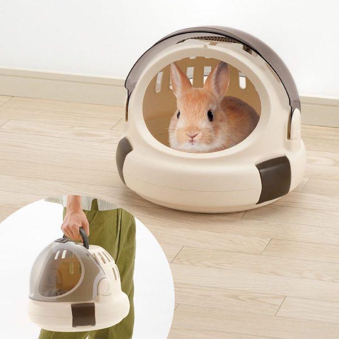 兔子外出提籃