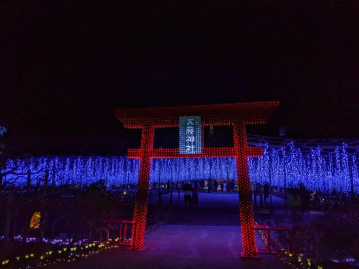 栃木縣 足利花卉公園
