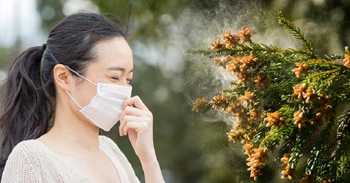 2020 花粉症 對策